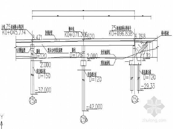 市政大桥及匝道桥形象进度图(CAD立面)