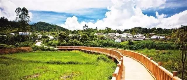 美丽乡村景观提升要点!!