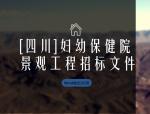 [四川]妇幼保健院景观工程招标文件(183页word格式)