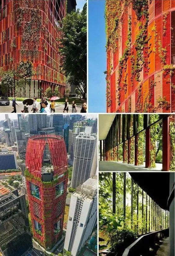 新加坡经典高端景观考察活动_74