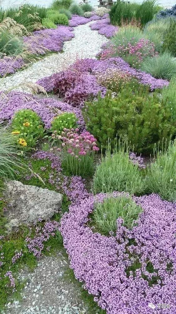 花草与石板的关系•花园小径_13