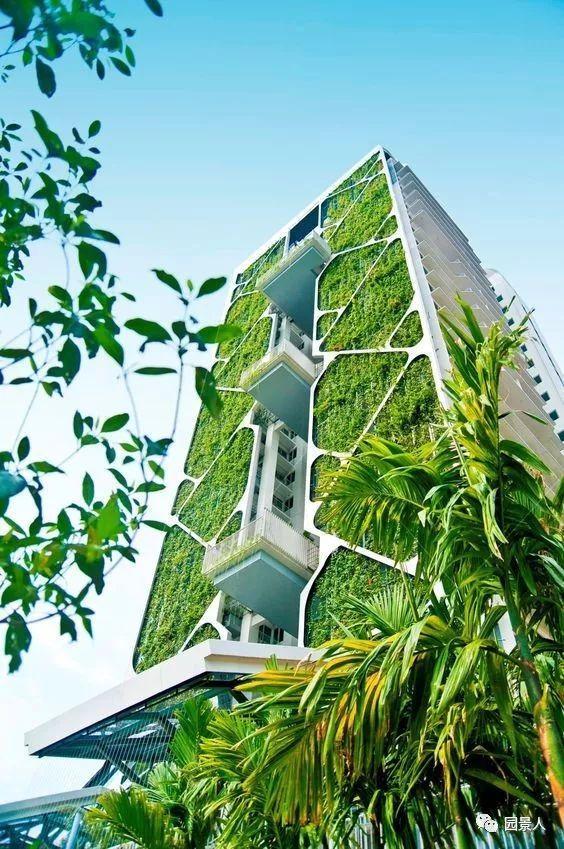 垂直绿化·会呼吸的墙壁_39