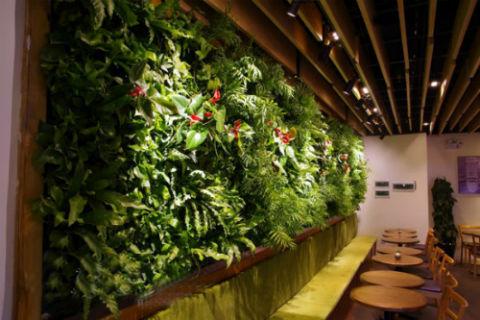 绿色仿真植物墙制作材料资源环保吗?