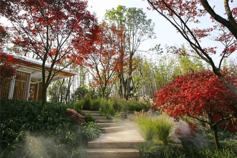 植物造景·实用景观设计来一波_12