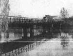 世纪公园景观桥梁设计(论文)