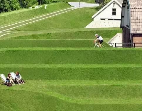 一块干净草坪,一棵树,美成一副画