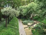 浅析现代企业园区中的植物景观营造形式