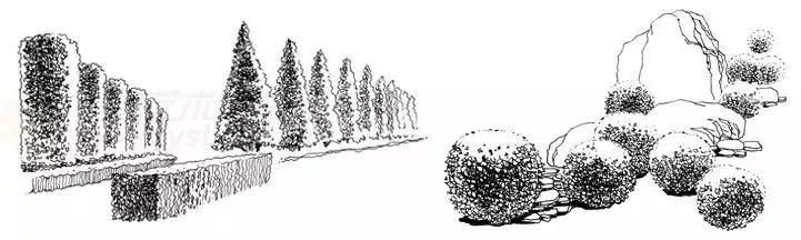 作为景观设计师必须掌握的景观线稿表现_25