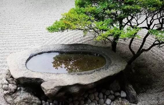 院子里弄上一汪池水,醉美!_3