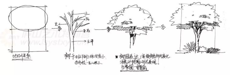 作为景观设计师必须掌握的景观线稿表现_15