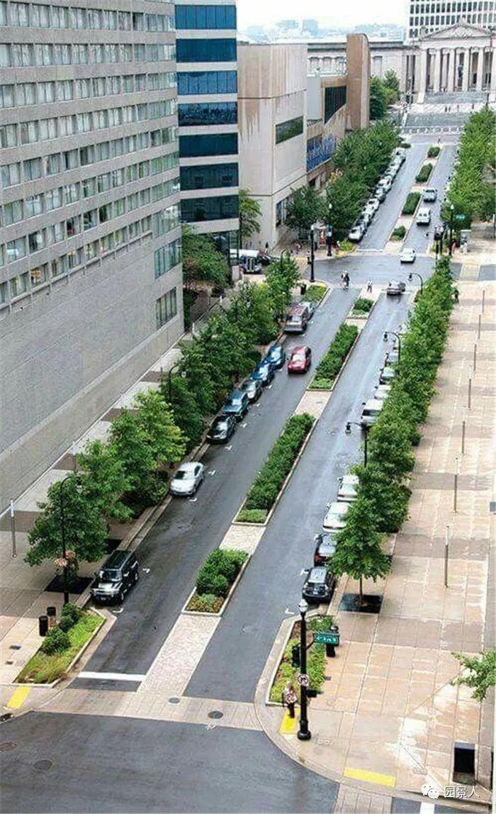 道路绿化带设计 · 实用干货