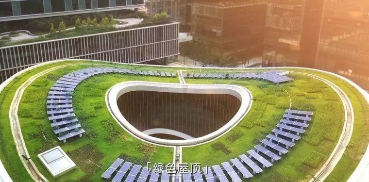 海绵城市:让您在城市里遇到大自然!_1