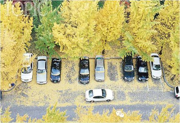 [硬货]停车场设计规范