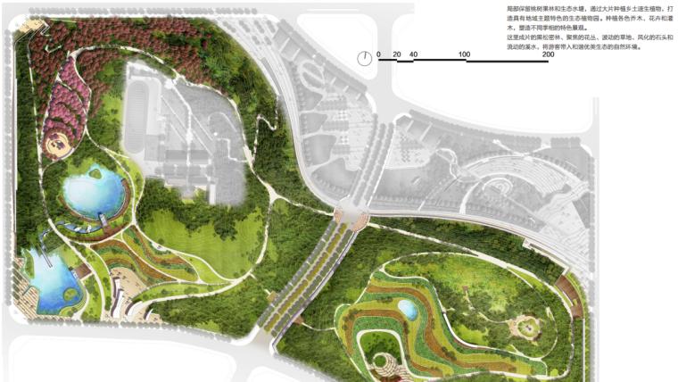 [安徽]含山县山体高差森林公园修建性详细规划设计C-1彩色植物园平面图