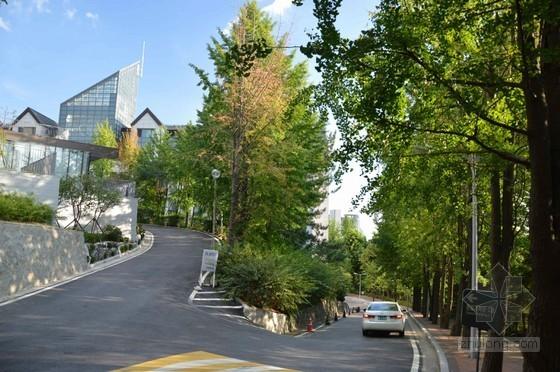 [安徽]中学新校区绿化工程预算书(全套图纸软件应用文件)