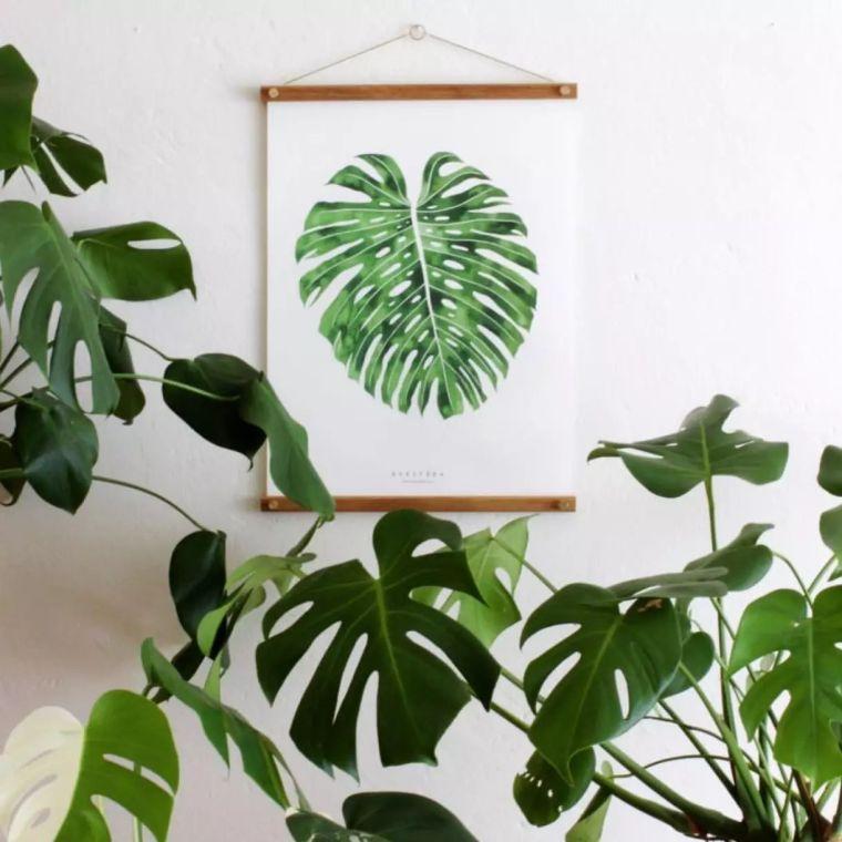 空气质量告急?这些扫霾植物排行榜中第一名竟然是......_35