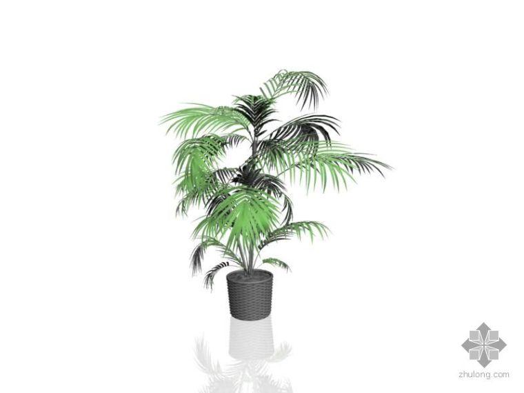 27个树木模型_1