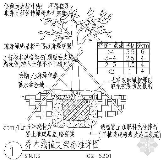 乔木栽植支架标准详图-4