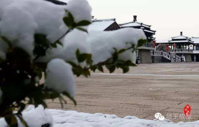 最美不过初雪,宿迁的项王故里就变成了西楚古城_19