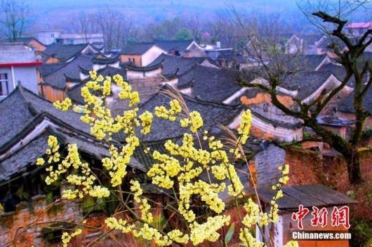 湖南永州零陵发现明清时期古建筑群