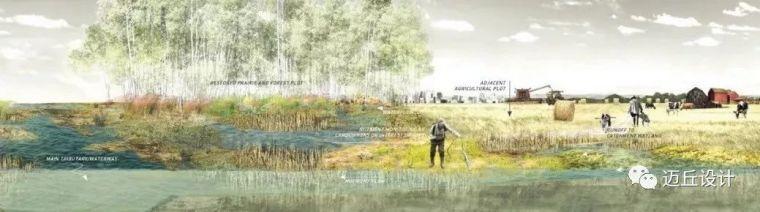 2019WLA世界建筑景观奖揭晓|生态创新_140