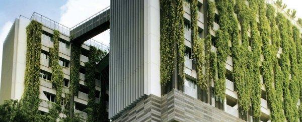 城市建筑应该覆盖绿植的N个理由