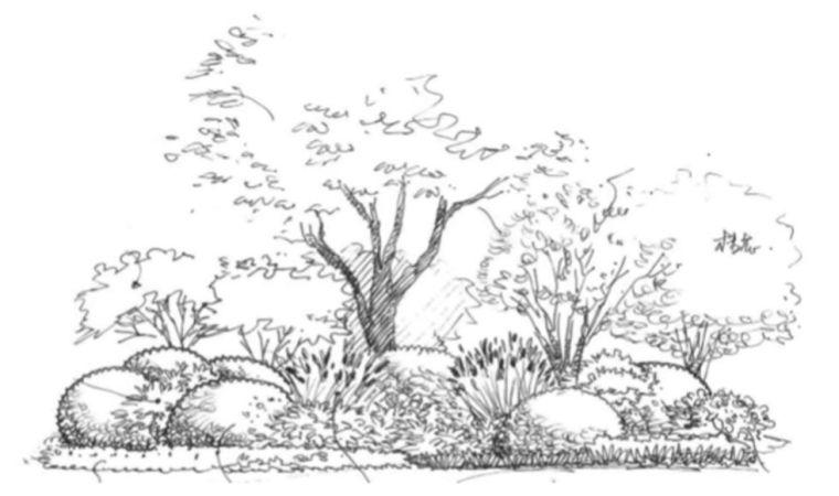 如何玩转植物造景之花镜_35