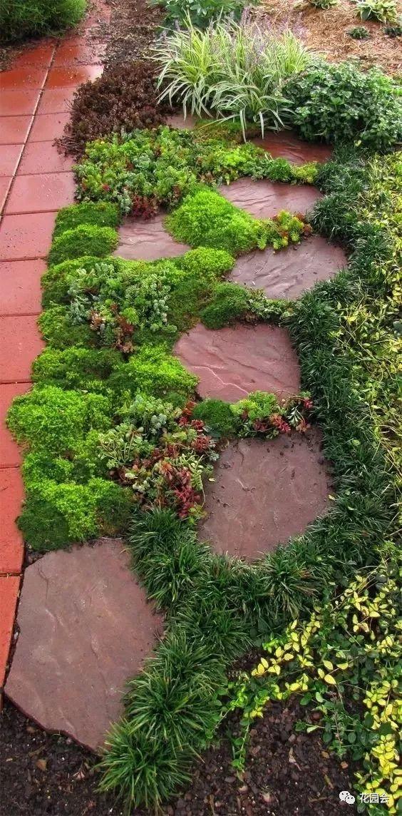 花草与石板的关系•花园小径_12