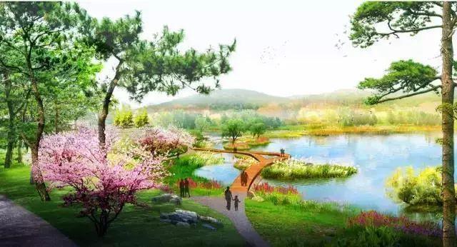 """这些必备的""""植物造景"""",不止是种树种花_25"""