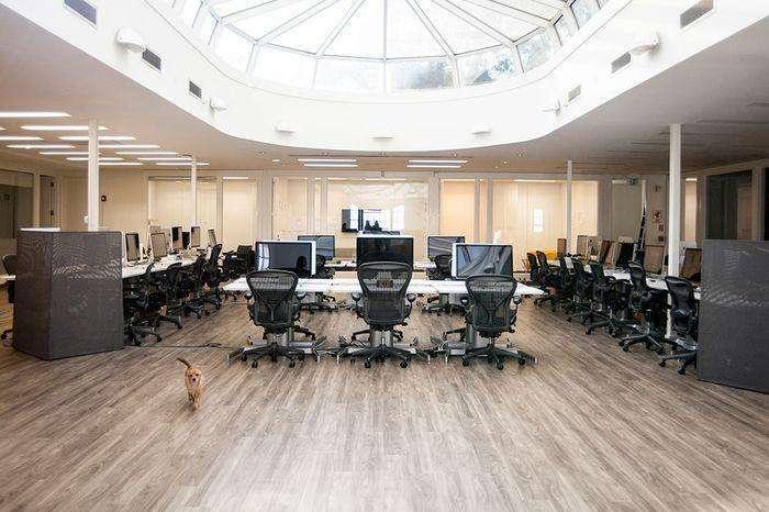 合肥办公室装修设计,赋予这个高挑的空间生命力和温暖感_6