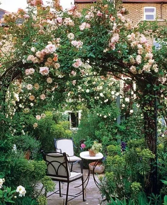不同风格的庭院植物配置,超详细!_8