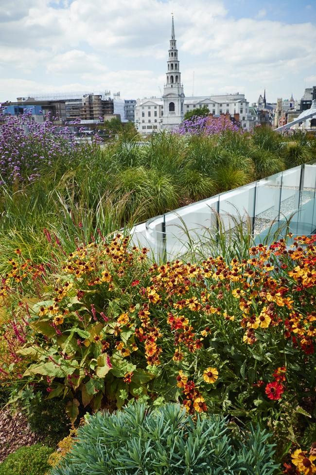 NewLudgate地块街道空间及屋顶花园-4