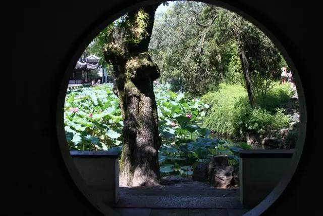 做古典园林景观设计,这些植物怎可不知?