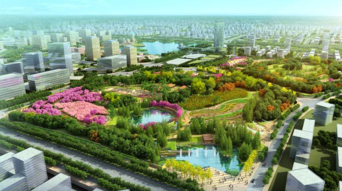 [安徽]生态人文气息流线型山体高差森林公园景观设计方案-彩色植物园区景观效果图