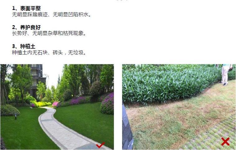 建筑景观工程敏感点品质提升路径培训讲义(71页,多图)