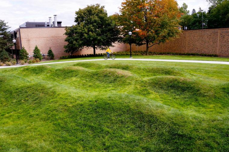 美国绿色波形草坪-1