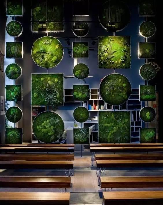 植物才是最美的隔断_23