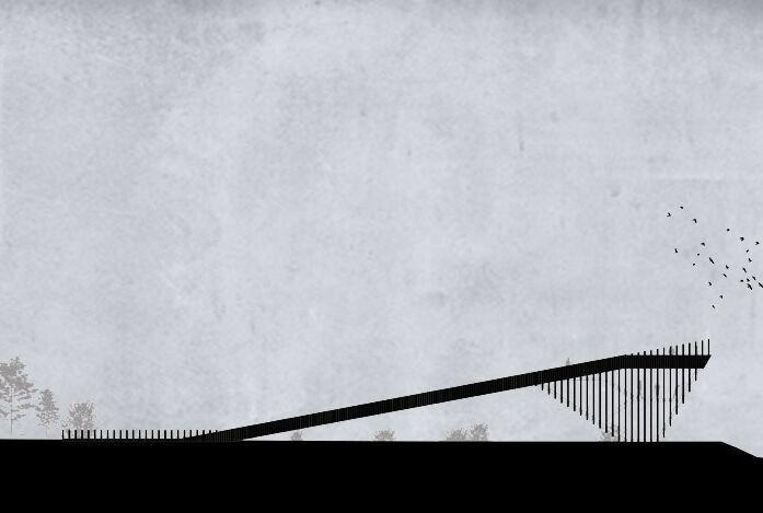 鹿特丹建筑师设计观鸟步道_4