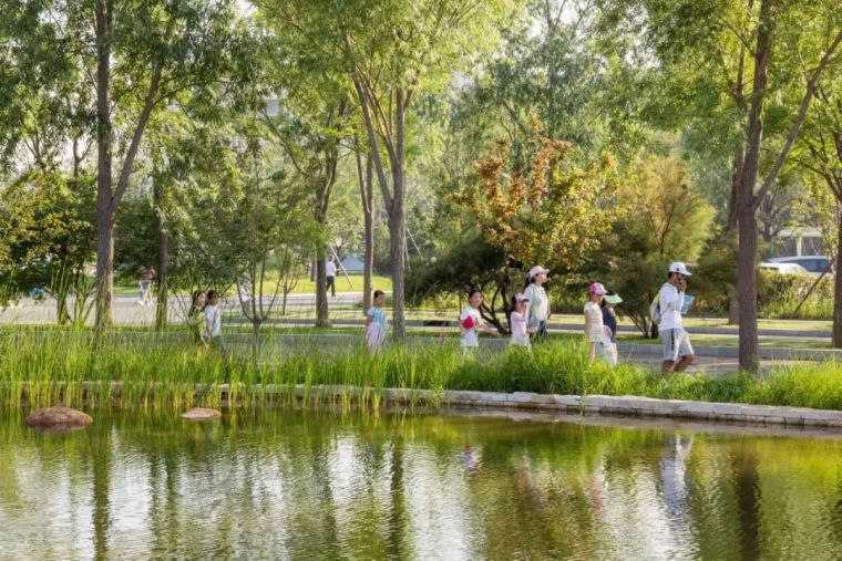 景观创造幸福感:张唐在全国设计的6个儿童公园