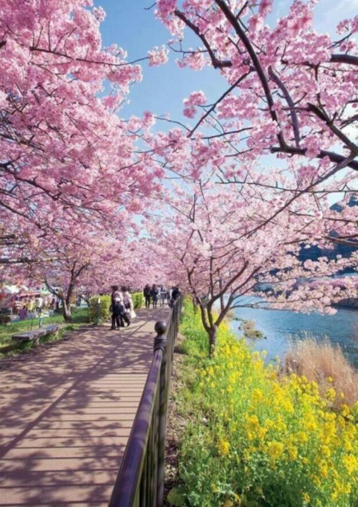 [河北]禅墨水韵生态湿地景观概念方案