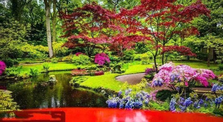 景观植物配置,就这么简单!