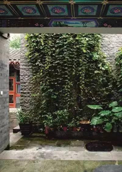 神仙的日子,杨丽萍的宅子,冯唐的院子~_3