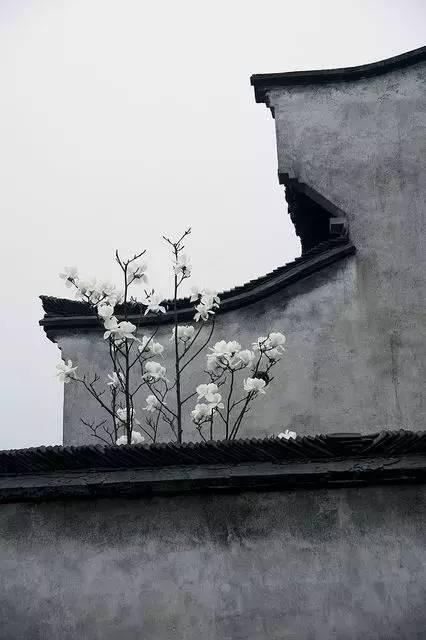 中式韵味·只有中国才有的符号_27