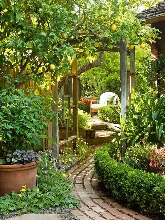 花园驻新颜,景观色彩搭配_22