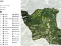 [云南]国家级林下中药材示范基地景观规划设计方案