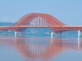 桥梁概论与高速铁路的桥梁PPT(303页)