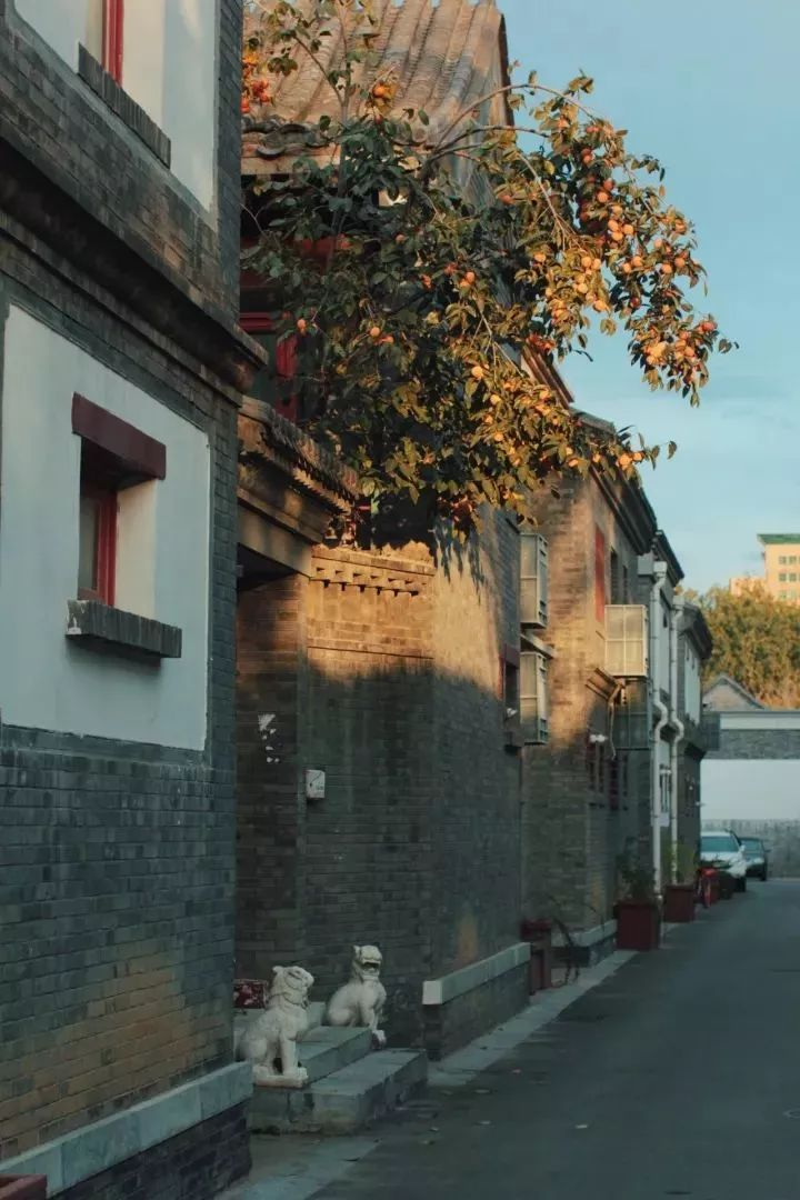 这才是中国人的院子,秋天美到骨子里_20