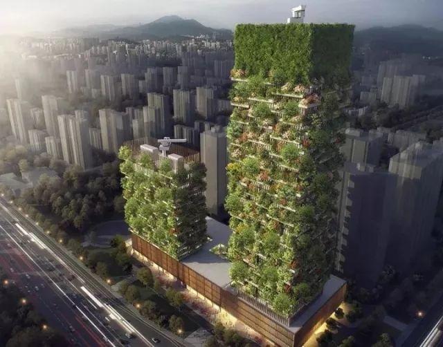 今年,在南京,这座建筑将变成森林_1