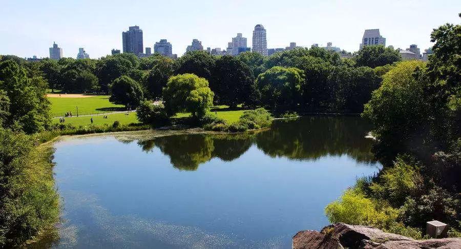 美国景观设计之父|奥姆斯特德和他的纽约中央公园_30