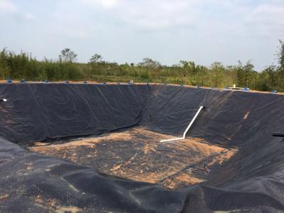 养殖场废水处理新工艺 黑膜技术